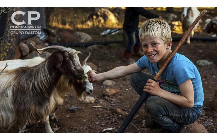 Mohammad es un niño que no tuvo la oportunidad de ir a la escuela como muchos lo de nosotros, a cambio de ello le ayuda a su familia como pastor. Al preguntarle cuales son sus deseos y sueños me dijo que él quería ser doctor para poder ayudar en la guerra.