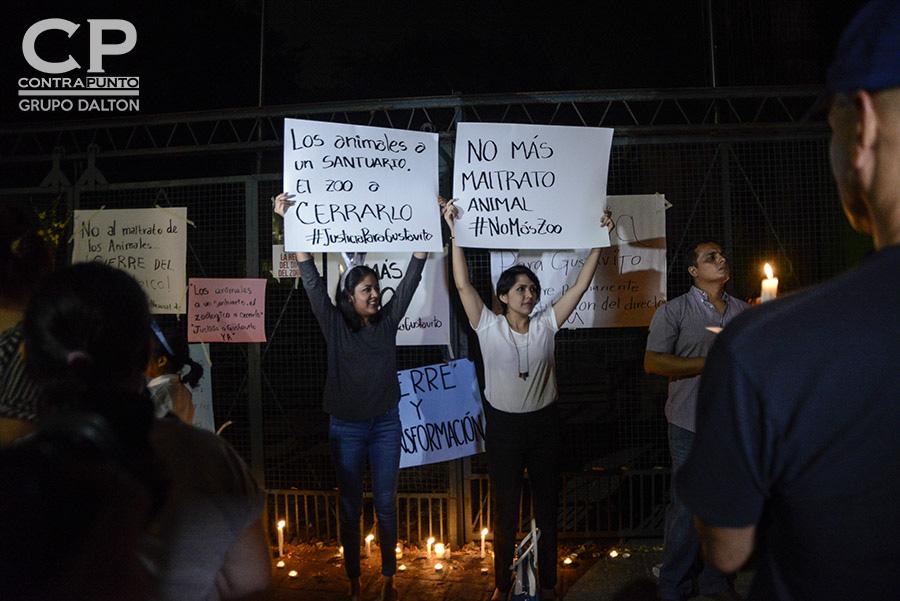 El 27 de febrero, la Secretaría de la Cultura de la Presidencia informó de la muerte del hipopótamo Gustavito a causa de una golpiza que le propinaron sujetos desconocidos en el Zoológico Nacional. La noticia dio inició a peticiones de cierre del lugar.