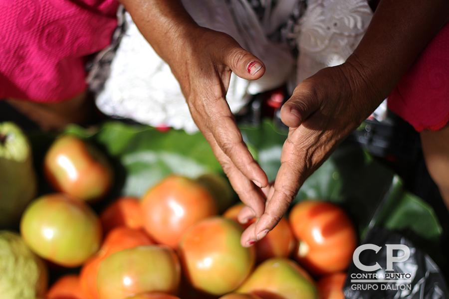 Manos que trabajan entre frutas y verduras.