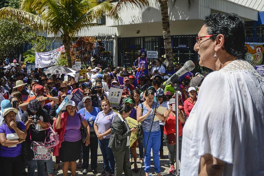 La diputada por el FMLN, Lorena Peña, reiteró en la conmemoración sobre la necesidad de aprobar la enmienda al Código Penal que permitiría la  despenalización del aborto en casos de violación sexual, en casos de malformaciones fetales incompatibles con la vida extrauterina y cuando el embarazo ponga la salud y vida de la mujer en riesgo.