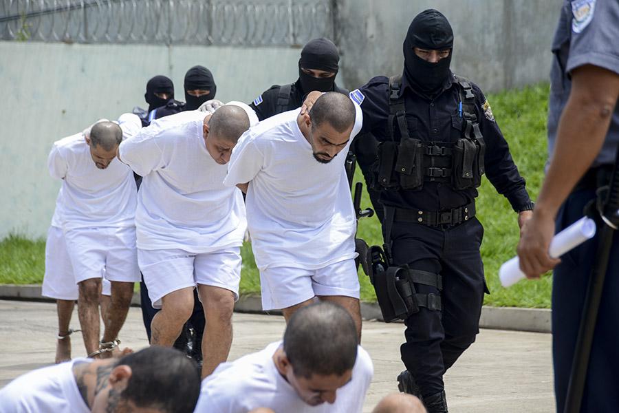 El gobierno salvadoreño trasladó a 40 miembros de la Mara Salvatrucha al penal de máxima seguridad, implicados en el asesinato de  miembros disidentes de la estructura criminal que han formado la facción MS503.