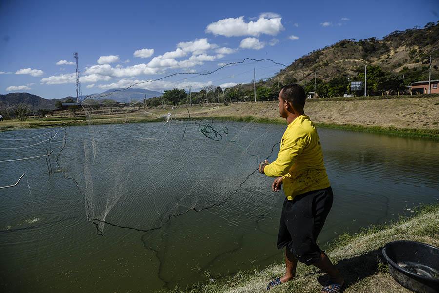 La granja penitenciaria de Apanteos para reos en fase de confianza,  está ubicada en el cantón Cutumay-Camones, en Santa Ana.
