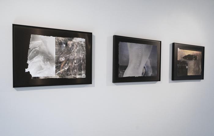 Pulse: New Cultural Registers/Pulso: Nuevos registros culturales, tintas de archivo pigmentadas sobre planchas de aluminio anodizado, 2020, RECORD: Cultural Pulses, RoFa Projects. Foto y copyright: Muriel Hasbun.