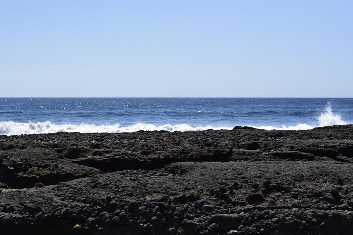 Playa el Zonte es una playa que cuenta con un nivel de olas de primer mundo para practicar el surf.